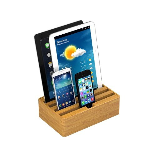 Medium Bamboo Alldock with devices (devices not included)